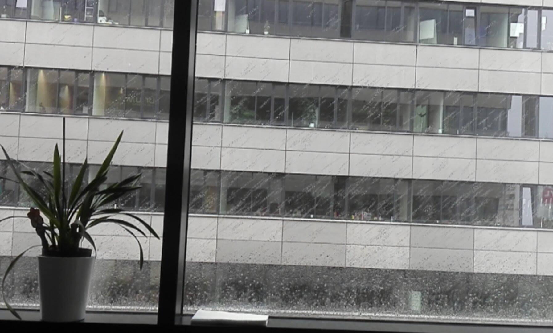 Pohled z okna kanceláře Terezky Š., šedivý :(